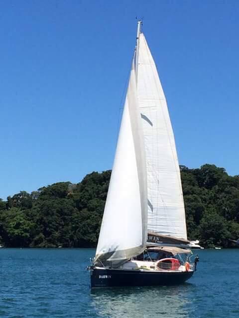 Darwin sailboat sailing