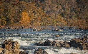 Fall at Great Falls Park