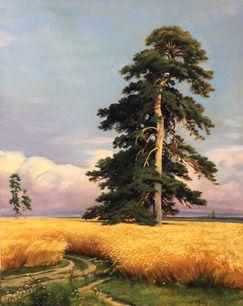 Rye Field (after Ivan Shishkin)
