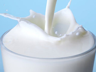 Heat Trace for Dairy Factories: Milk Fats - AMF (Anhydrous Milk Fats) and Lecithin