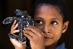 boy shows off his new pet turtle that he caught in the sea