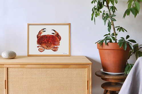 Reproduction crabe