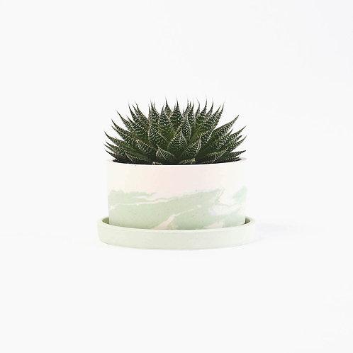 Grand pot vert de gris