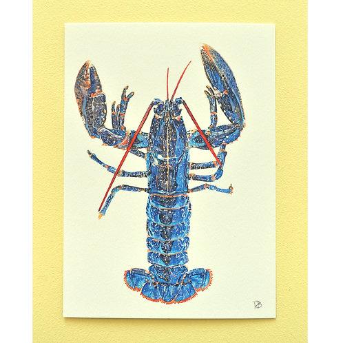 Carte homard
