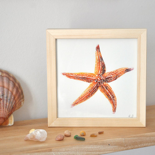 Aquarelle originale - étoile de mer