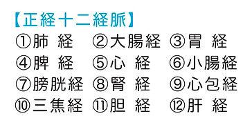 12経脈.jpg