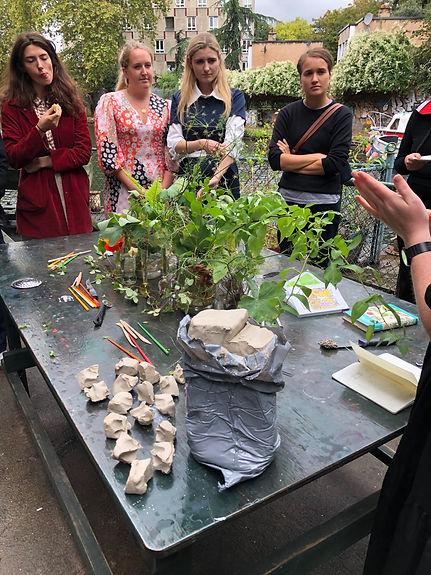 Plants II 12.JPG