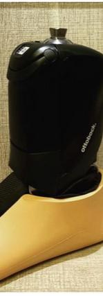 Mechatronic Prosthetic Foot