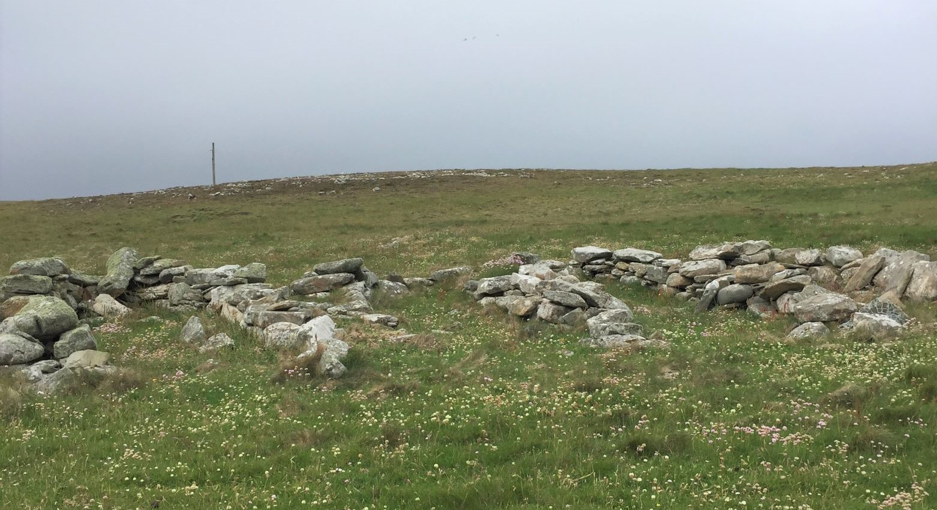 Four free standing, tumbled-down, large dry stone walled noosts. The artificial drying beach can be seen on the hillock behind the noosts.