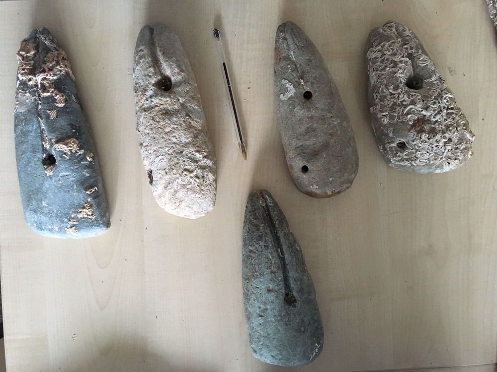 A collection of fishing sinkers used for catching saithe were found over a period of several years whilst dredging for scallops between the islands of Unst and Fetlar