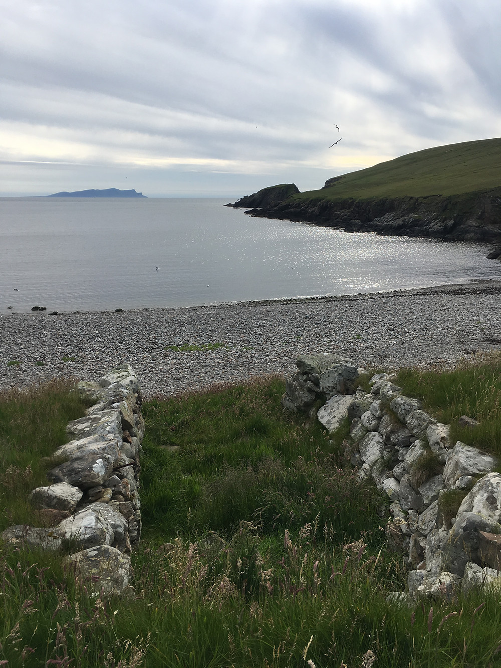 Looking west from a boat noost which is in the foreground at the remains of the fishing station at Dale of Walls. The island of Foula can be seen in the distance.