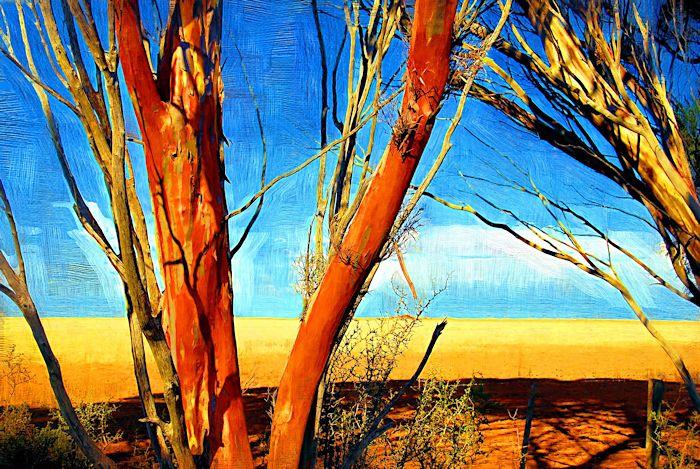 0702c095 -trees paint3d.jpg