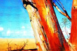 0702c107 -tree paintb.jpg