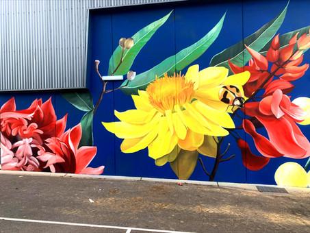 Native Flora, Surrey Hills Primary, 2021
