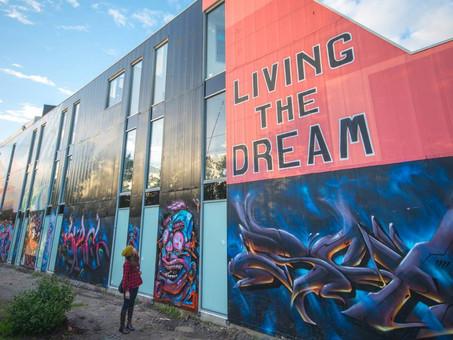 Living The Dream Balaclava 2014