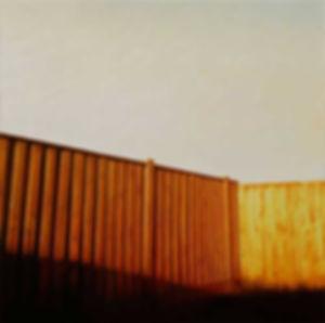 Backyard-fence.jpg