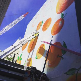 Oranges and Summer Days