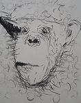 Carsten Dahl, tegning,uden titel