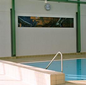 Carsten Dahl, Frederiksværk svømmehal