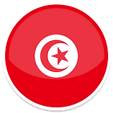 Tunisia-icon.png