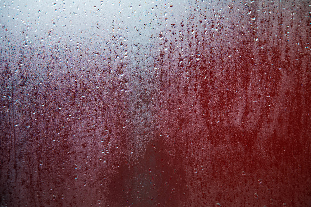 Condensation and raindrops on cold glass on a winter morning. Photographed by Megan Kennedy