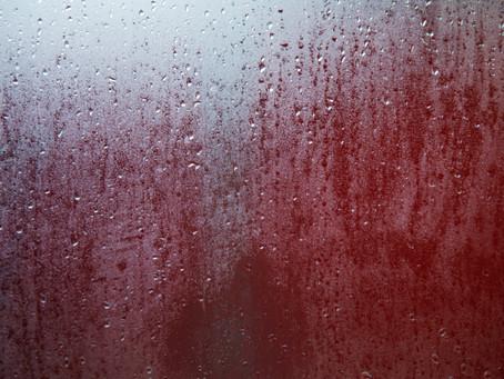 Photo Diary #54 - Winter Morning