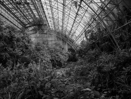 Abandoned - Urbexing Jungle Park