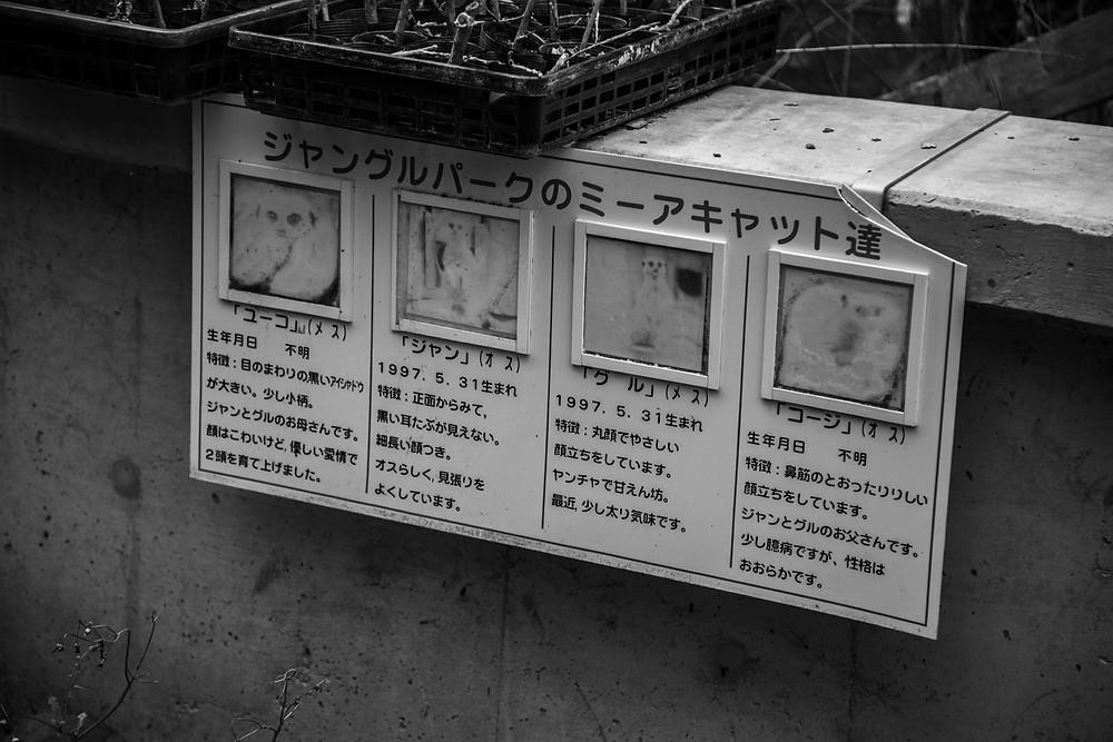 Abandoned Jungle Park on the Irozaki Peninsula, Japan. Names indicating the inhabitants of an empty meerkat enclosure. Photographed by Megan Kennedy