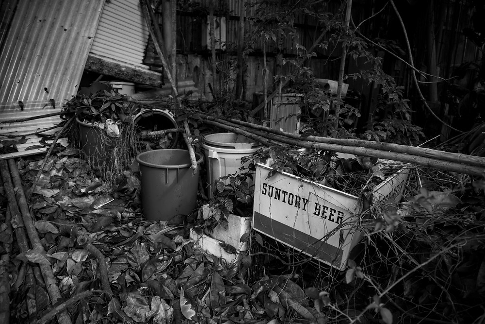 Abandoned Jungle Park on the Irozaki Peninsula, Japan. A crate labelled Suntory beer is now filled with leaves and branches. Photographed by Megan Kennedy