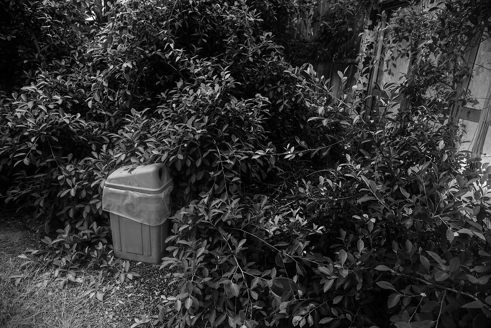 Black and white photo of a bin nearly engulfed in foliage found while urbexing in Jungle Park in Japan. Photographed by Megan Kennedy