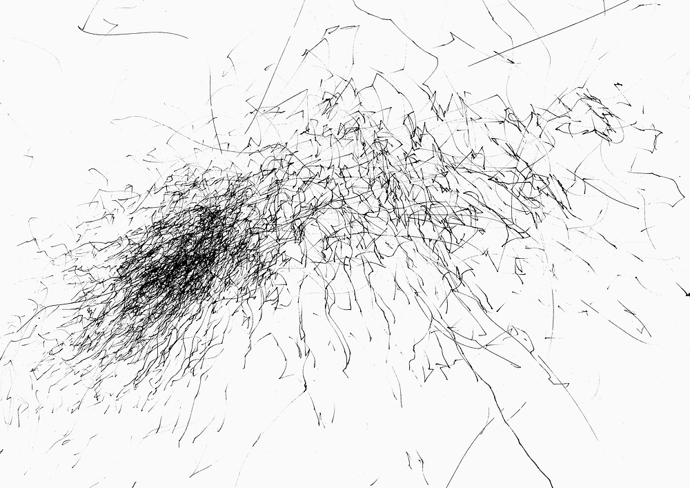 abstract black and white wind-generated drawing by megan kennedy