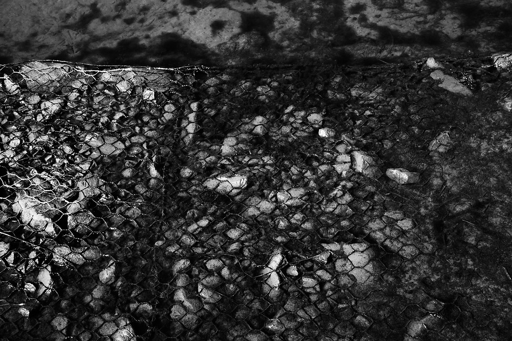 pond abstract black and white photography