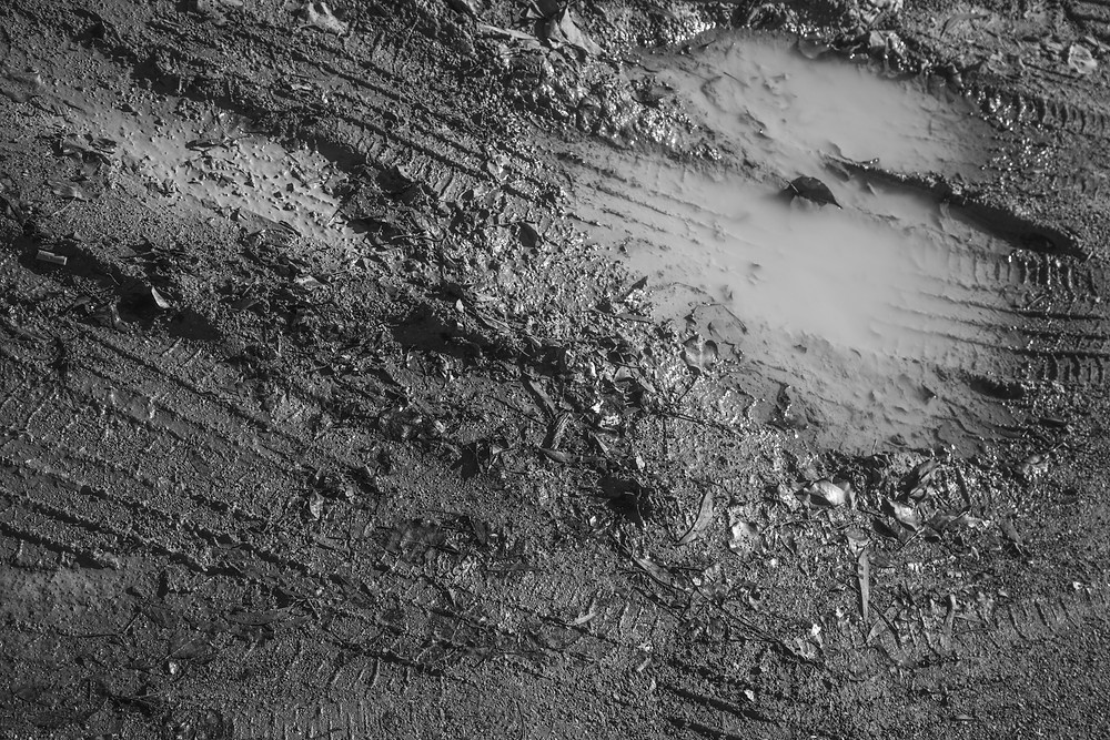 A black and white photograph of mud and a puddle taken by Megan Kennedy