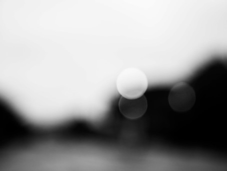 Photo Diary #29