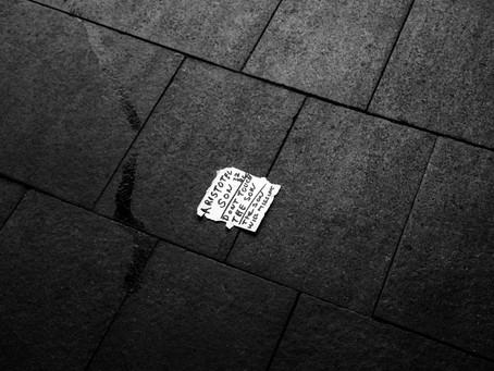 Photo Diary #08
