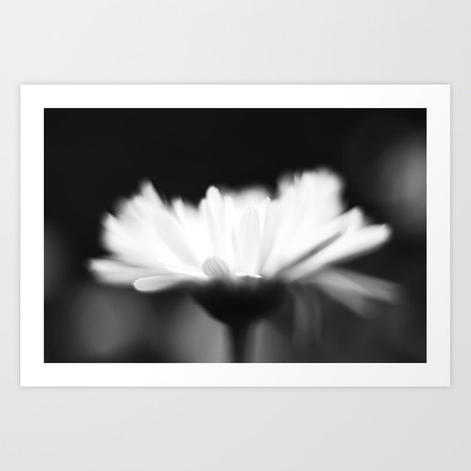 flower-abstract4262330-prints.jpg