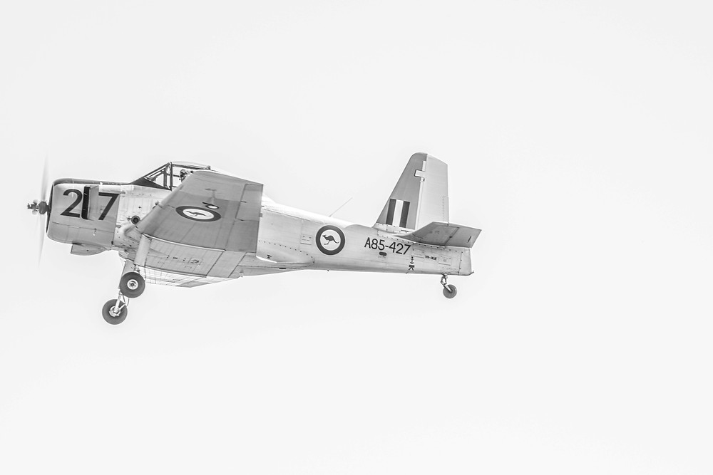 An airborne CA-25 Winjeel in black and white photographed by Megan Kennedy