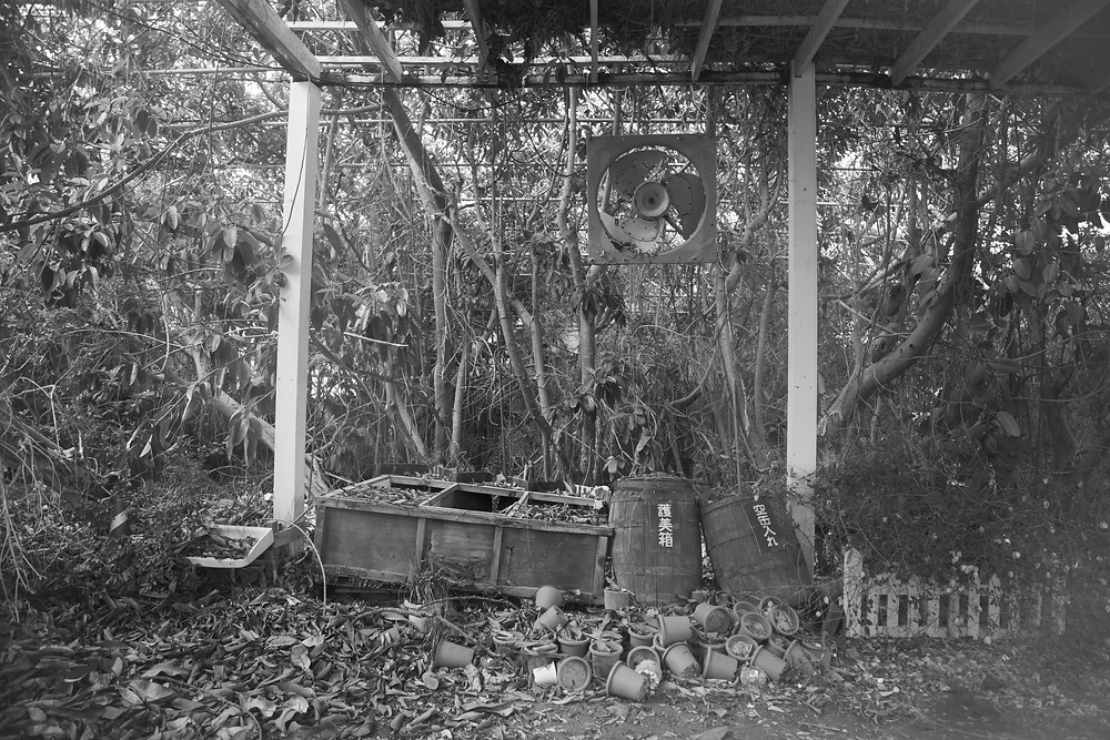 Abandoned Jungle Park on the Irozaki Peninsula, Japan. A black and white photograph of inside the abandoned park. Photographed by Megan Kennedy
