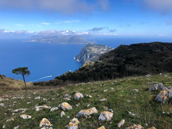 View from Mt. Solaro, on the island of Capri