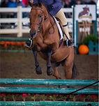 Arielle jump_n.jpg