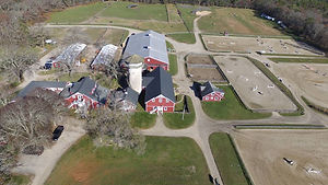 aerial view from treehouse mayflower.jpg