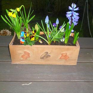 Blumenkasten 4