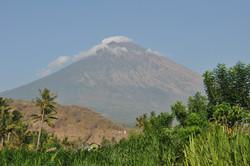 Mount Agung from d'Sawah