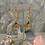 Thumbnail: Golden Coin Citrine Dream