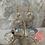 Thumbnail: Swarovski Gold Edgy Hoops