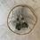 Thumbnail: Labradorite Silver Dreamer
