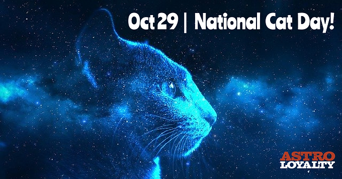 Celebrate Your Cat's Superpowers on National Cat Day