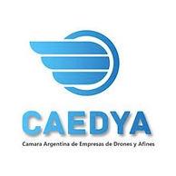 Logo CAEDYA.jpg