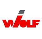 representada-femat-wolf.png