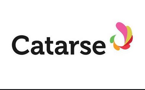 catarse logo.png